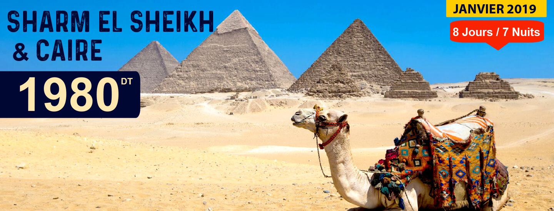 SHARM EL SHEIKH & CAIRE